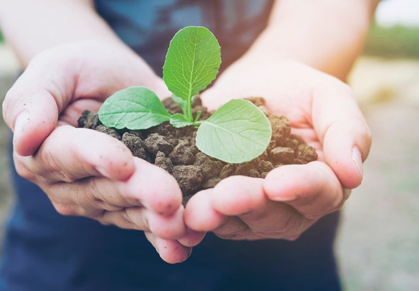 Ambev repensa relação com o meio ambiente e adota posturas sustentáveis
