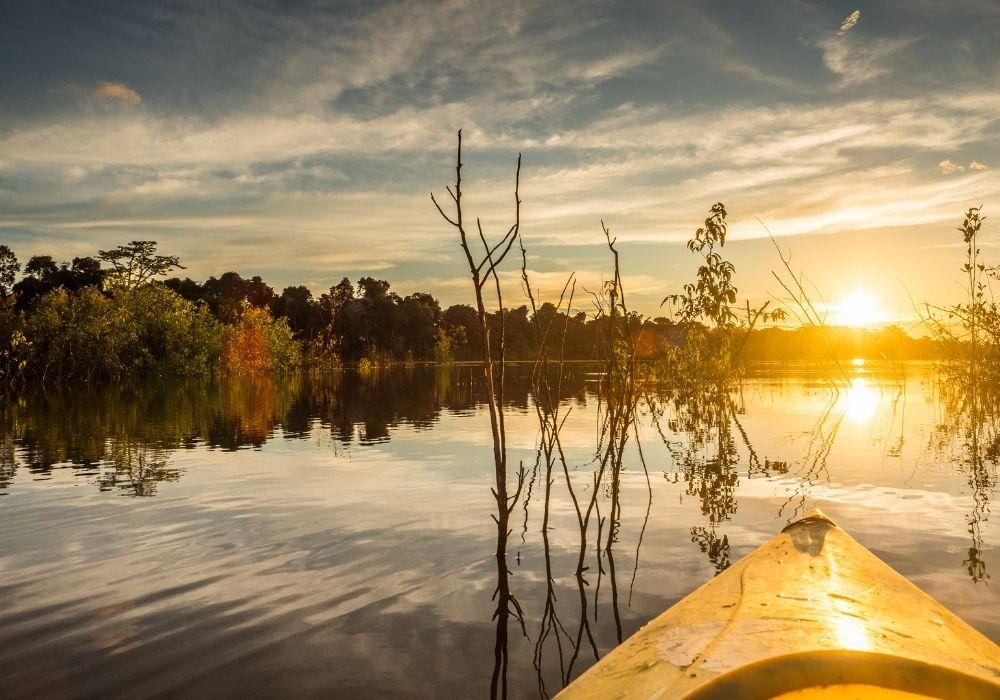Imagem retangular com uma paisagem natural apresentando um fim de tarde em tons amarelados. Ao fundo, um céu azul com nuvens, juntamente com um pôr do sol refletindo seus raios sobre as águas de um rio cercado por floresta. À frente, galhos retorcidos e um ponta de uma canoa na cor amarela.